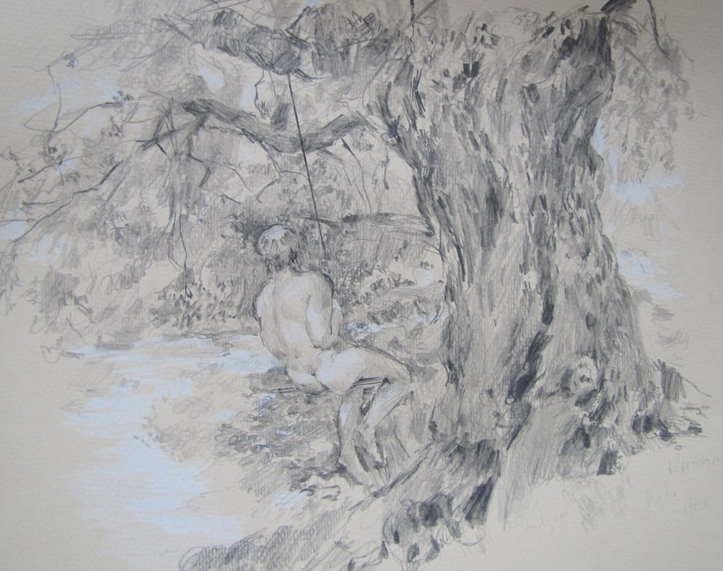Simon Swinging in Sycamores 2012 Pencil on Pastel paper 18 x 28 cm